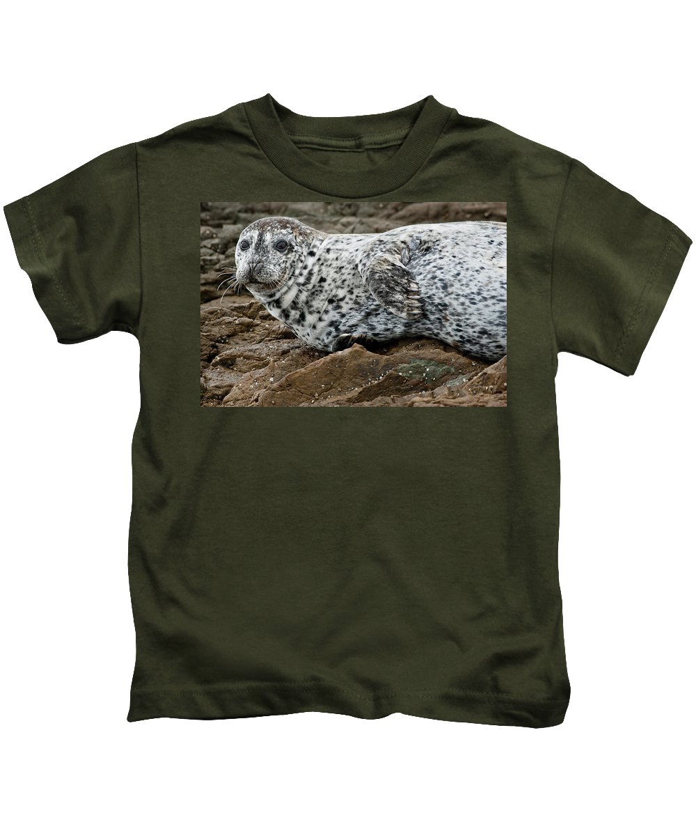 Seal Kids T-Shirt featuring the photograph Forlorn Seal by Greg Nyquist