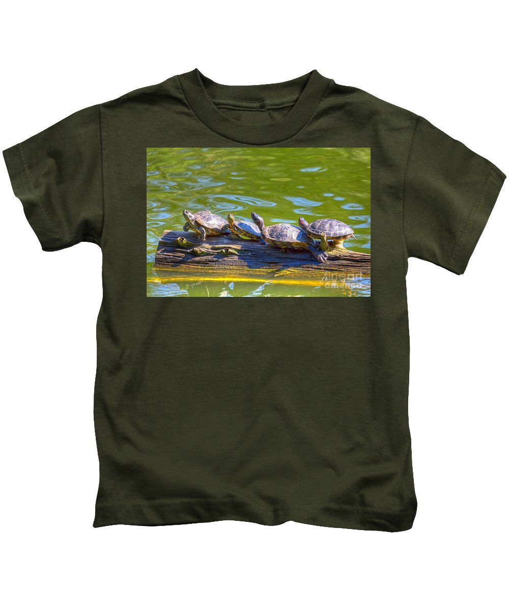 Golden Gate Park Kids T-Shirt featuring the photograph Four Turtles by Kate Brown