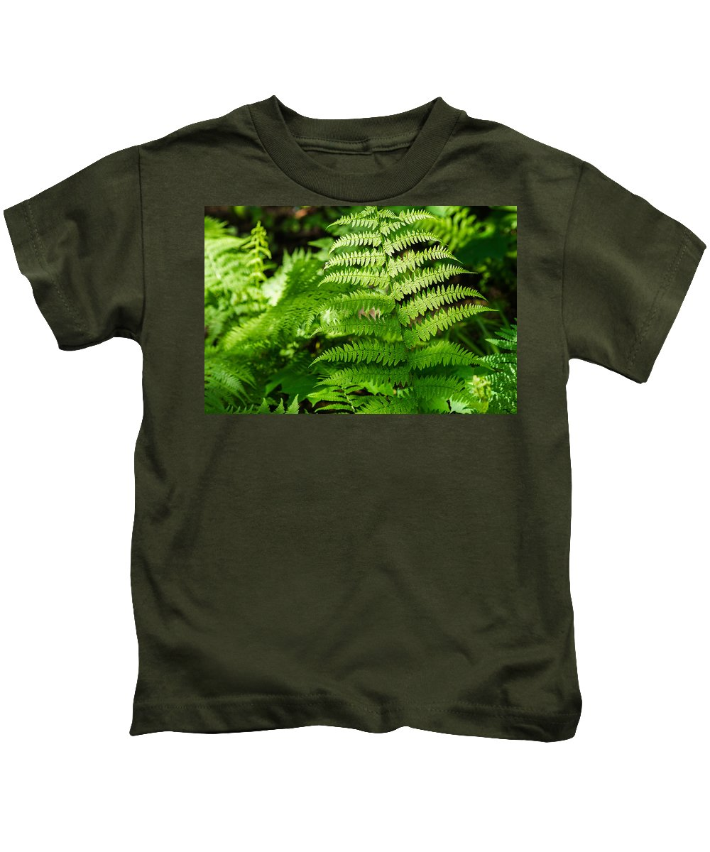 Agriculture Kids T-Shirt featuring the photograph Fresh Fern - Featured 2 by Alexander Senin