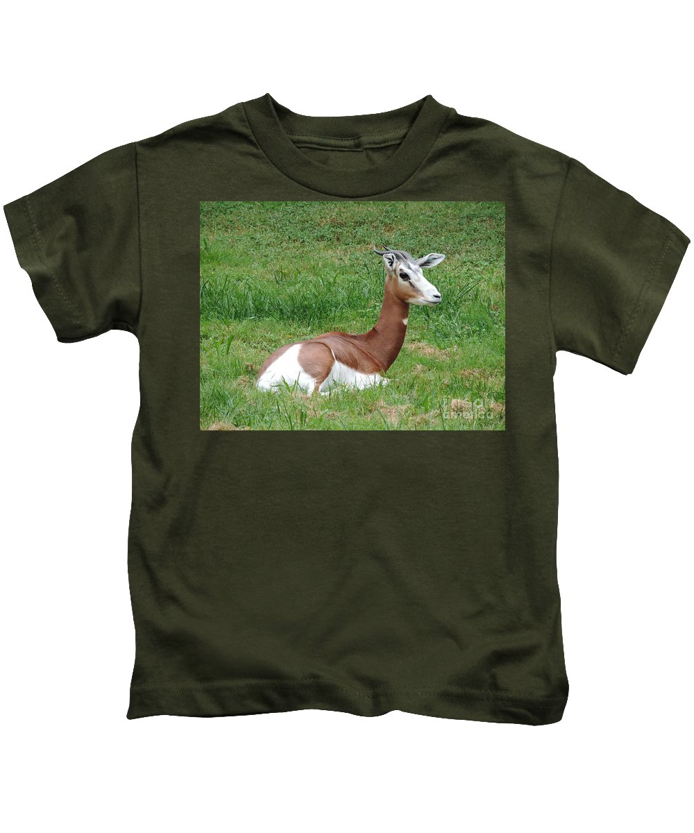 Gazelle Kids T-Shirt featuring the photograph Gazelle At Rest 1 by Heather Jane