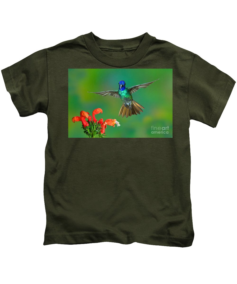 Animal Kids T-Shirt featuring the photograph Golden-tailed Sapphire At Flower by Anthony Mercieca