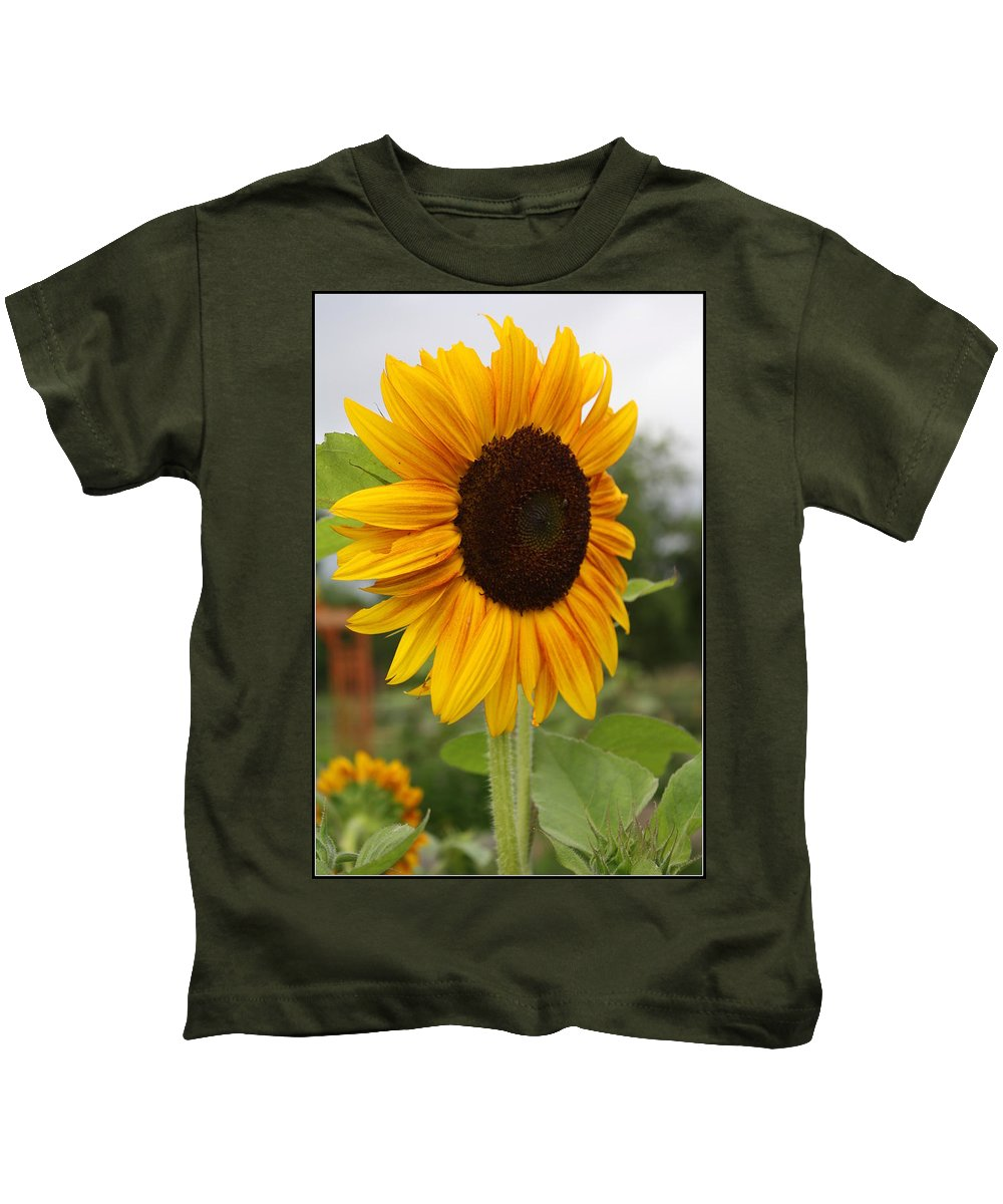 Sunflowerfield Kids T-Shirt featuring the photograph Good Morning Sunshine - Sunflower by Dora Sofia Caputo Photographic Design and Fine Art