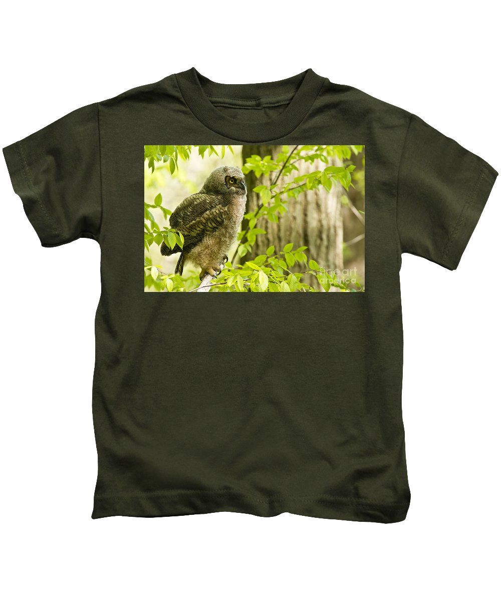 Michael Cummings Kids T-Shirt featuring the photograph Great Horned Owlet by Michael Cummings