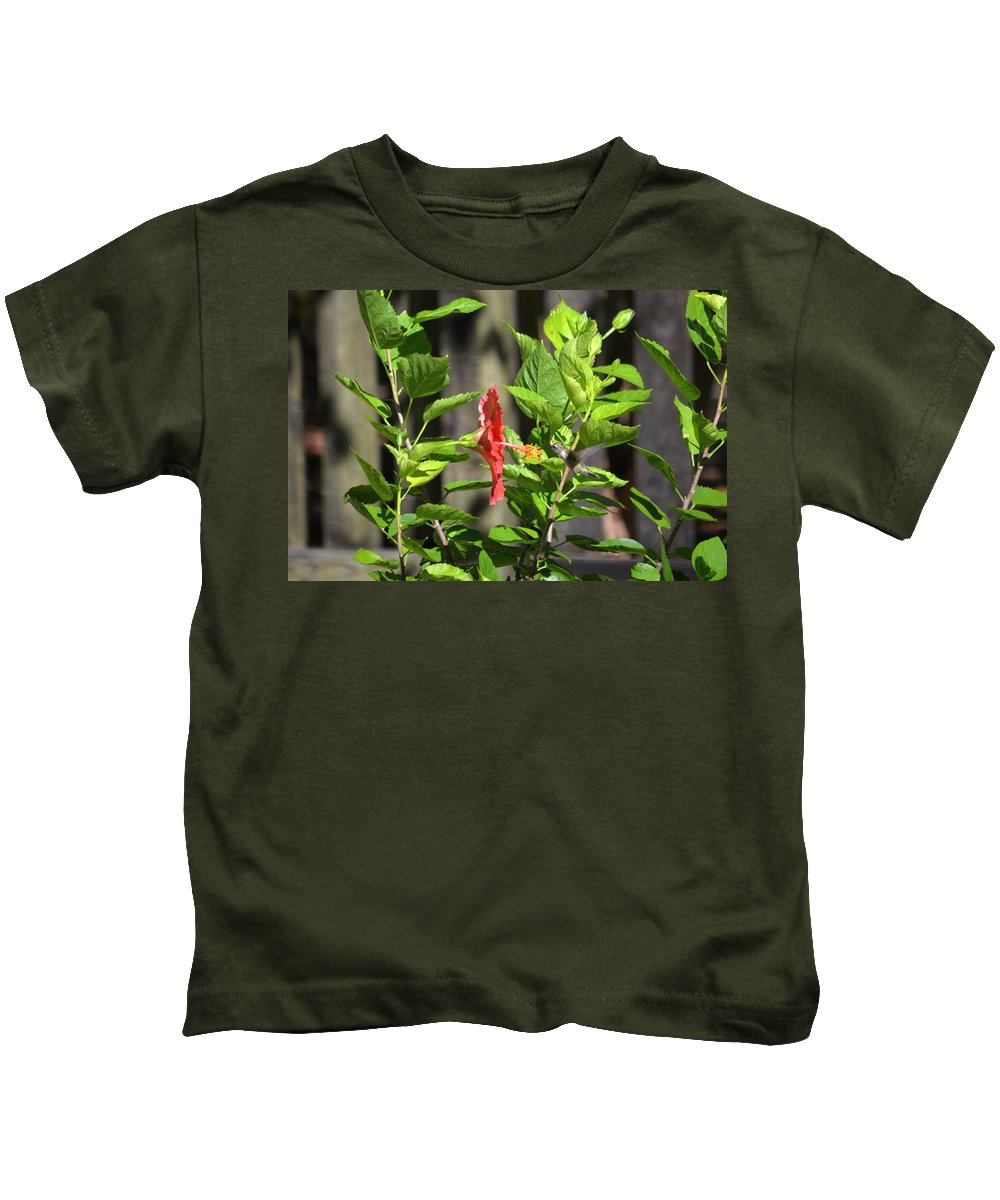 Green Kids T-Shirt featuring the photograph Green Hummingbird On Red Hibiscus Flower 2 Of 10 by Jeff at JSJ Photography