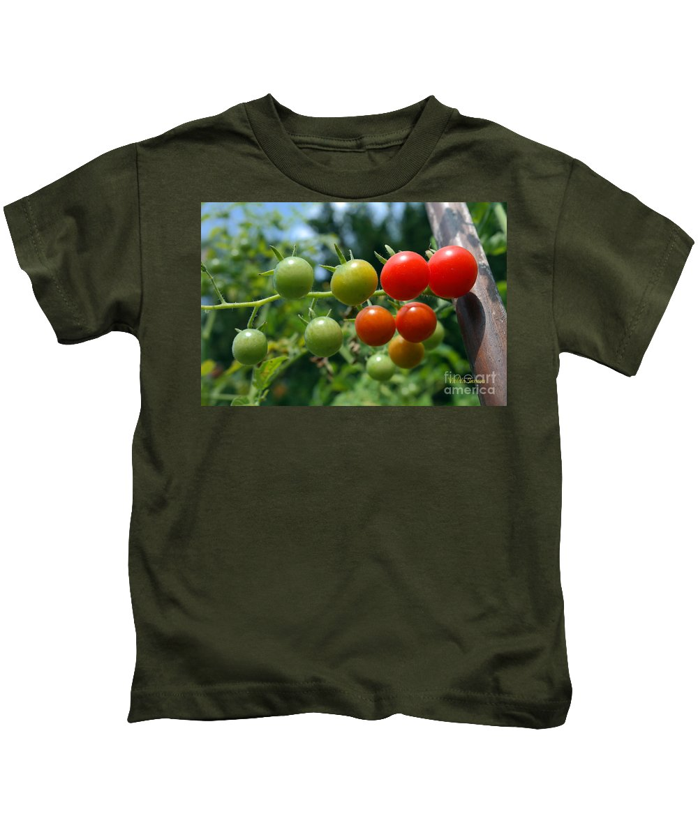 Tomatoes Kids T-Shirt featuring the photograph Harvest Tomatoes by Violeta Ianeva