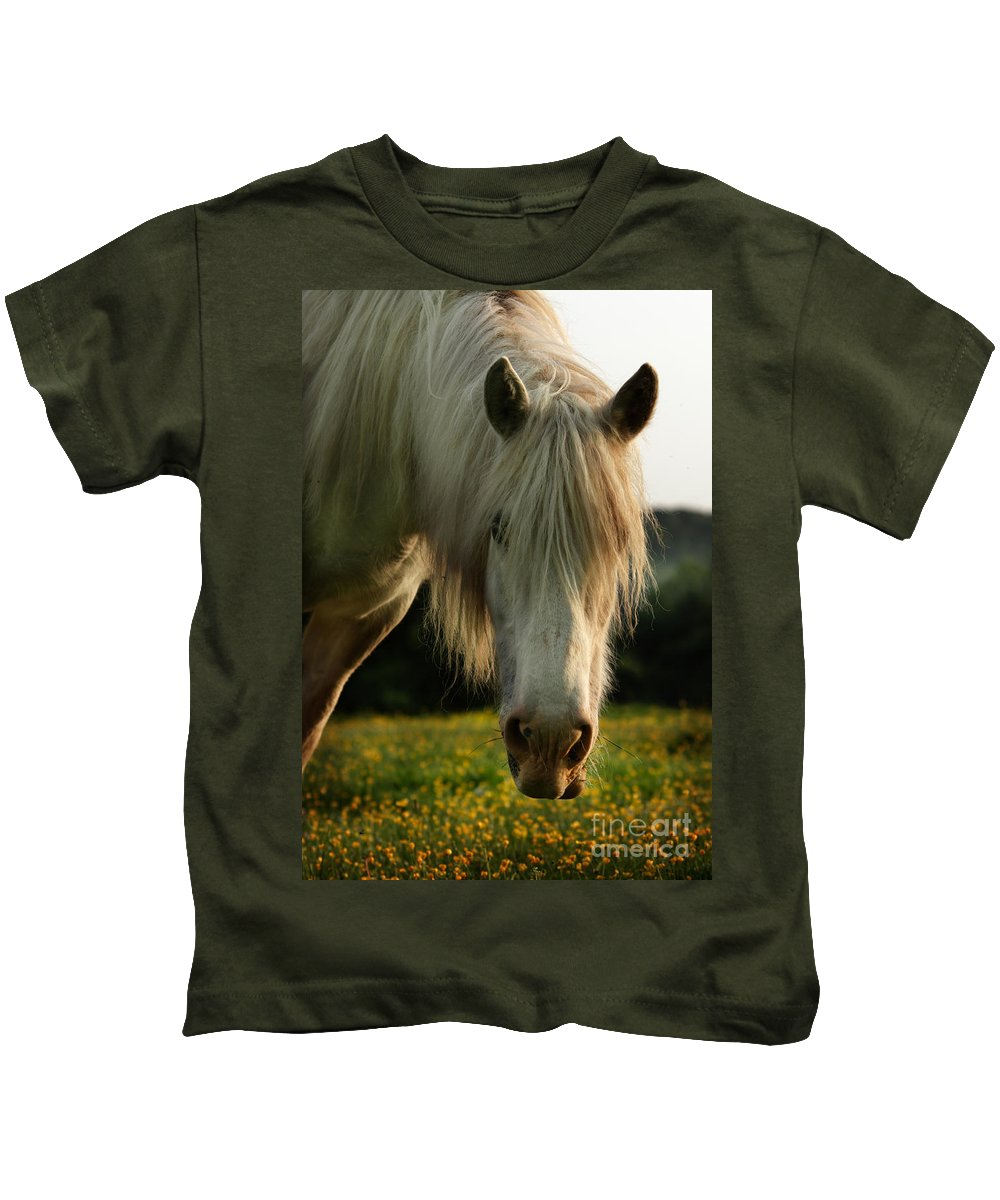 Grey Horse Kids T-Shirt featuring the photograph Hello Mate by Angel Tarantella
