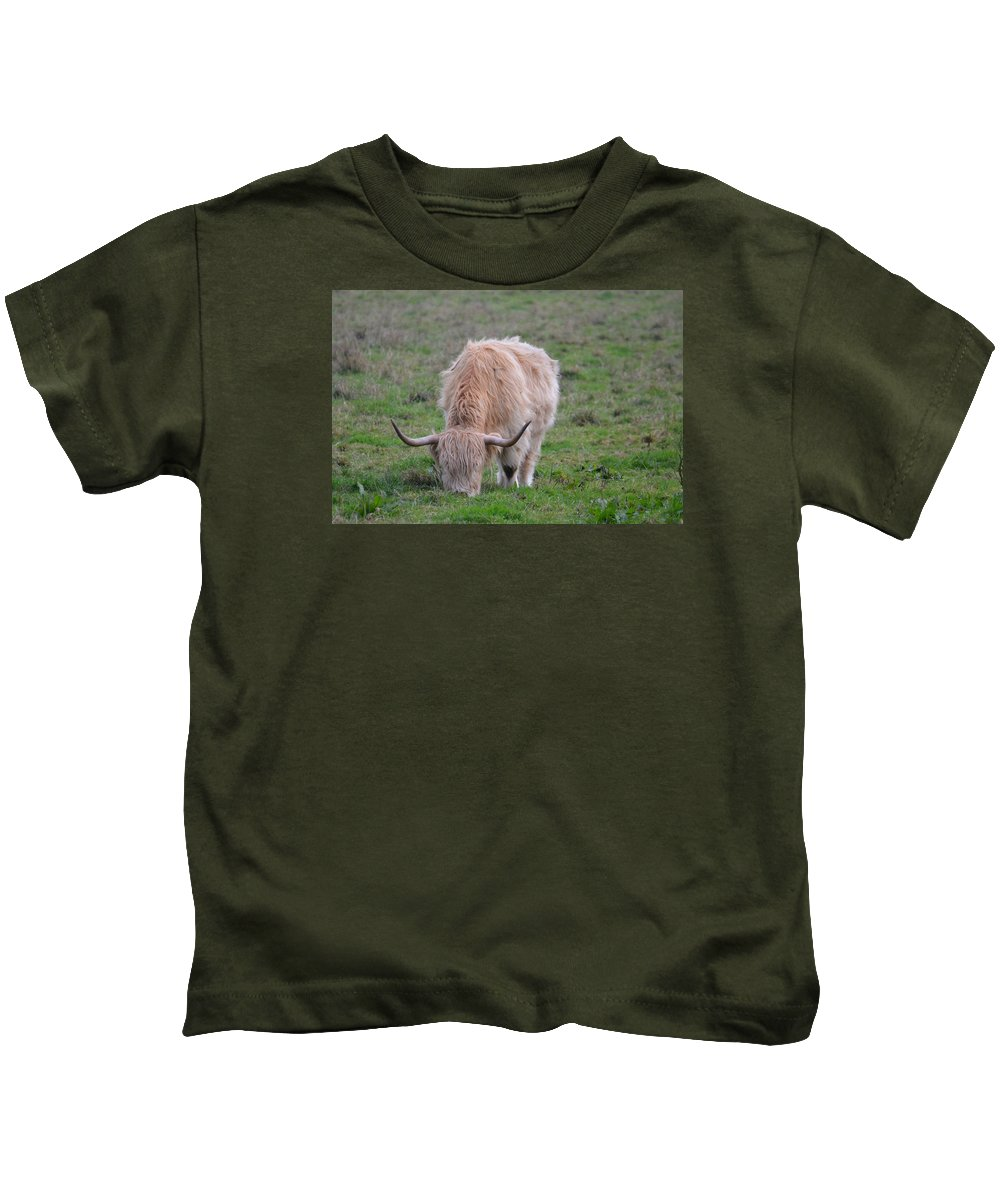Cattle Kids T-Shirt featuring the photograph Highland Cow by FL collection