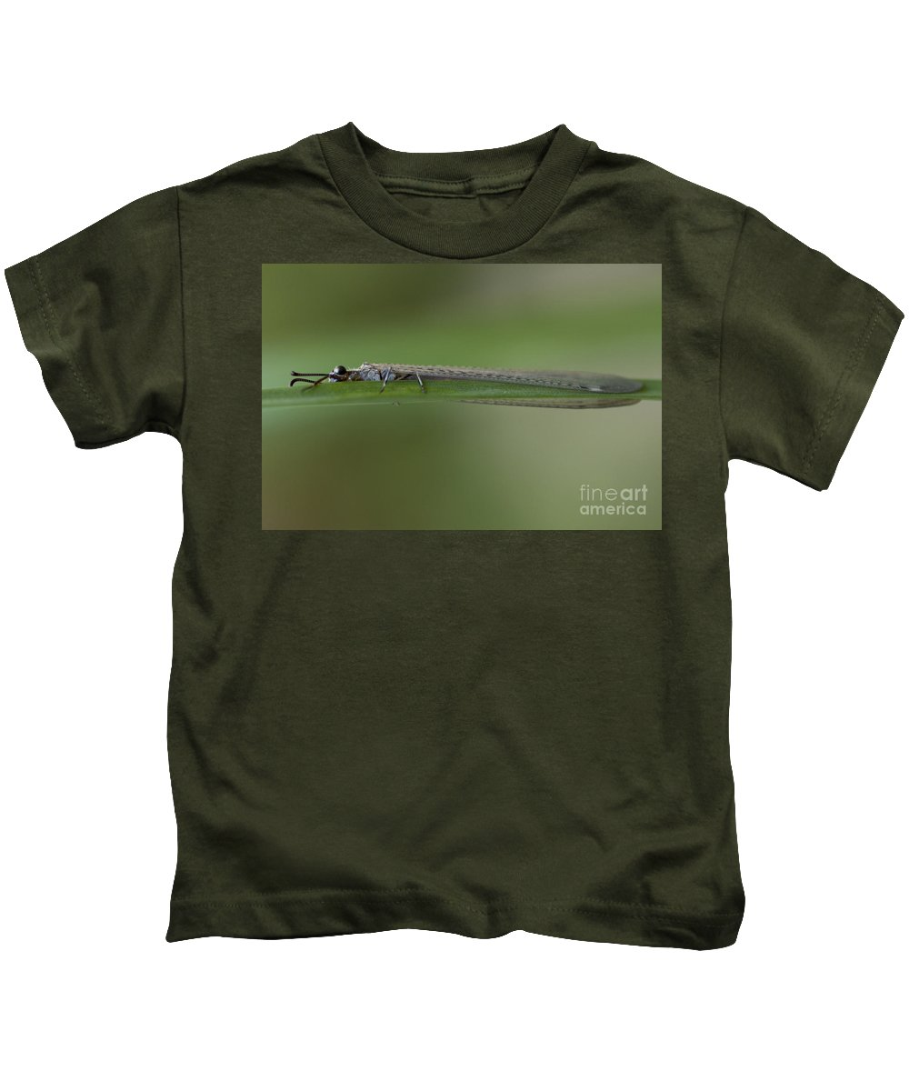 Damselfly Kids T-Shirt featuring the photograph Hold On Tight - Damselfly by Meg Rousher