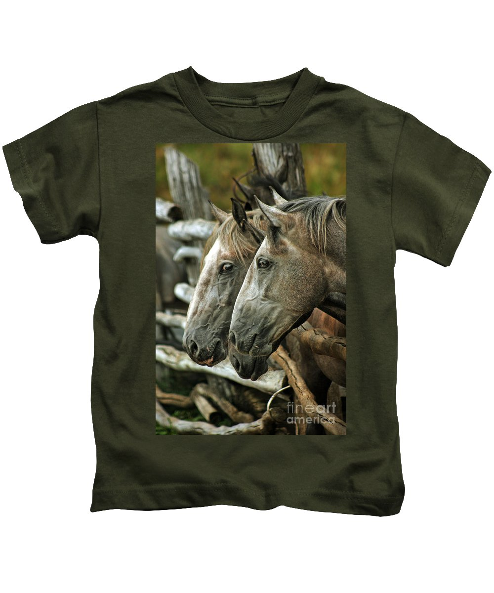 Horse Kids T-Shirt featuring the photograph Horses Looking Through The Fence by Angel Ciesniarska