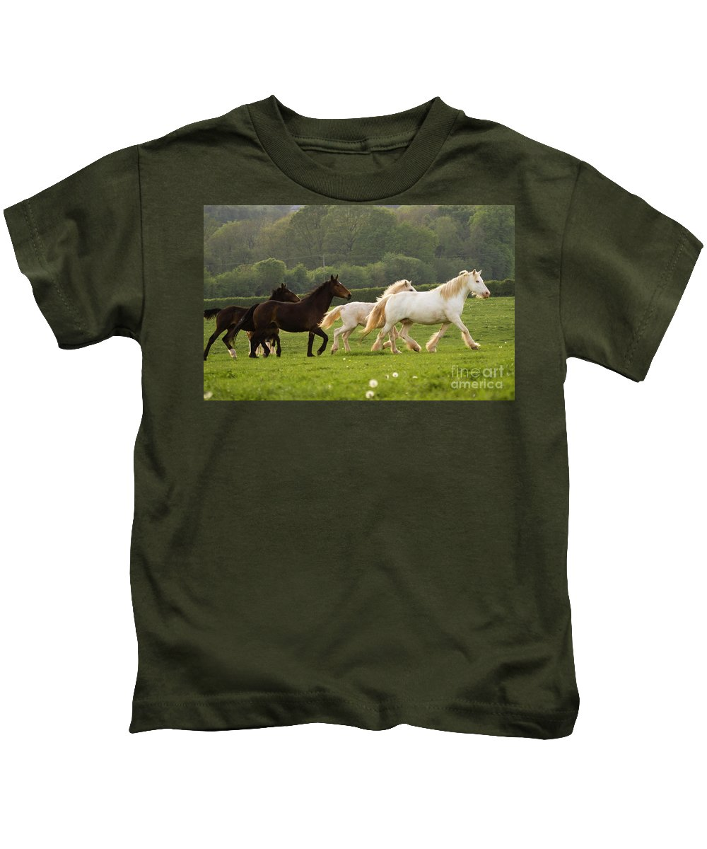 Kids T-Shirt featuring the photograph Horses On The Meadow by Angel Ciesniarska