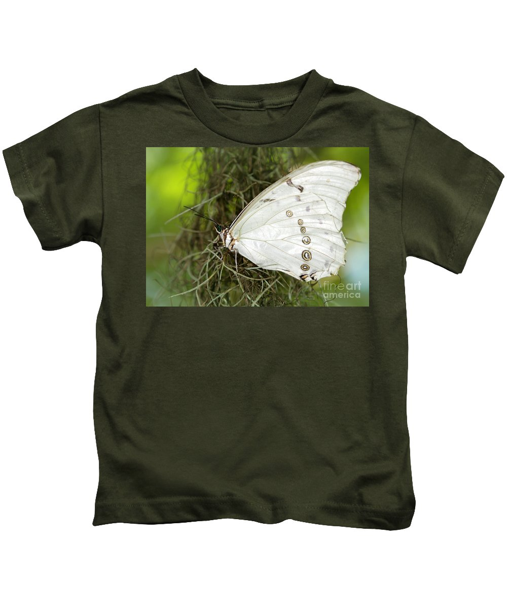Macro Kids T-Shirt featuring the photograph Huge White Morpho Butterfly by Sabrina L Ryan