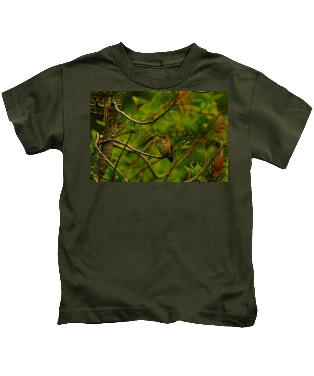 Hummingbirds Kids T-Shirt featuring the photograph Humming Birds Perched by Jeff Swan