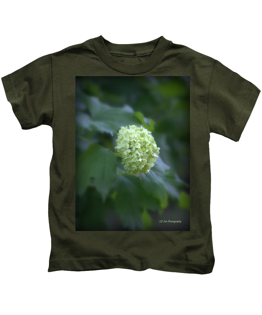 Hydrangea Kids T-Shirt featuring the photograph Hydrangea Glory by Jeanette C Landstrom