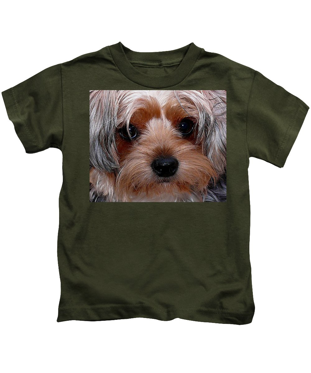 Yorkshire Terrier Kids T-Shirt featuring the photograph I Love You by Stuart Harrison