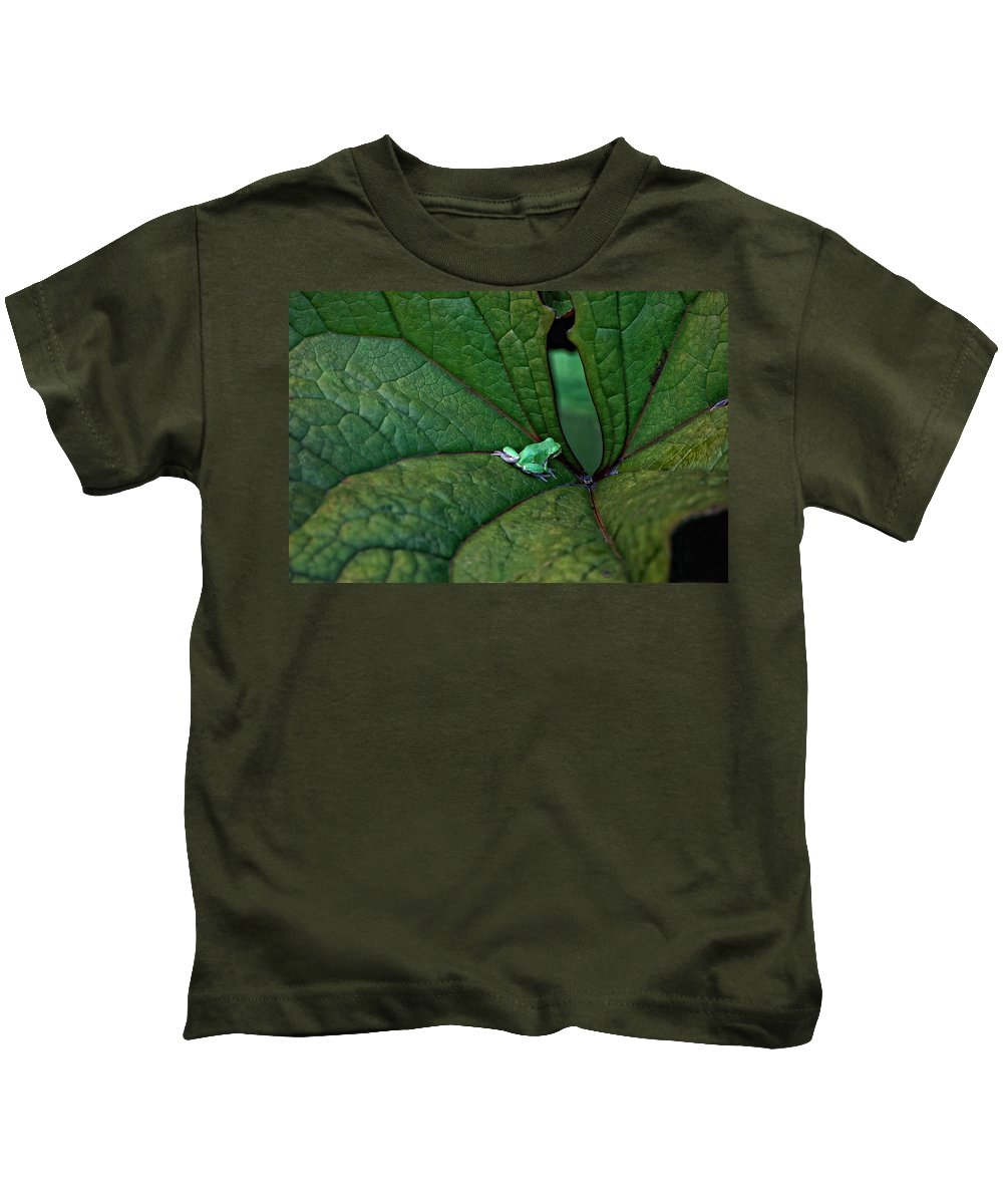 Leaf Kids T-Shirt featuring the photograph In The Groove by Steve Harrington
