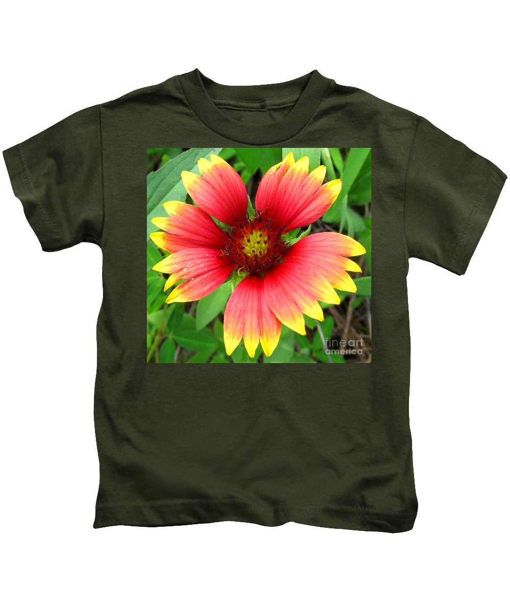 North American Wildflowers Native Flora Wild Meadow Ecosystem Md Pa Nj Ny Nc Sc Va Wildflowers Red And Yellow Flowers Indian Blanket Images Wild Flora Prints Natural Concentric Design In Nature Prints Wildflower Prints New World Flowers Rare Flowers Common Flowers Garden Flowers Cheapeake Wildflower Photographs Kids T-Shirt featuring the photograph Indian Blanket by Joshua Bales