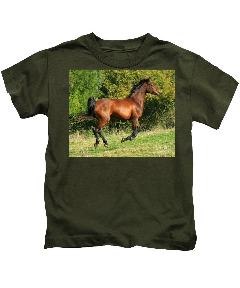 Horse Kids T-Shirt featuring the photograph Jump Jump Jump by Angel Ciesniarska