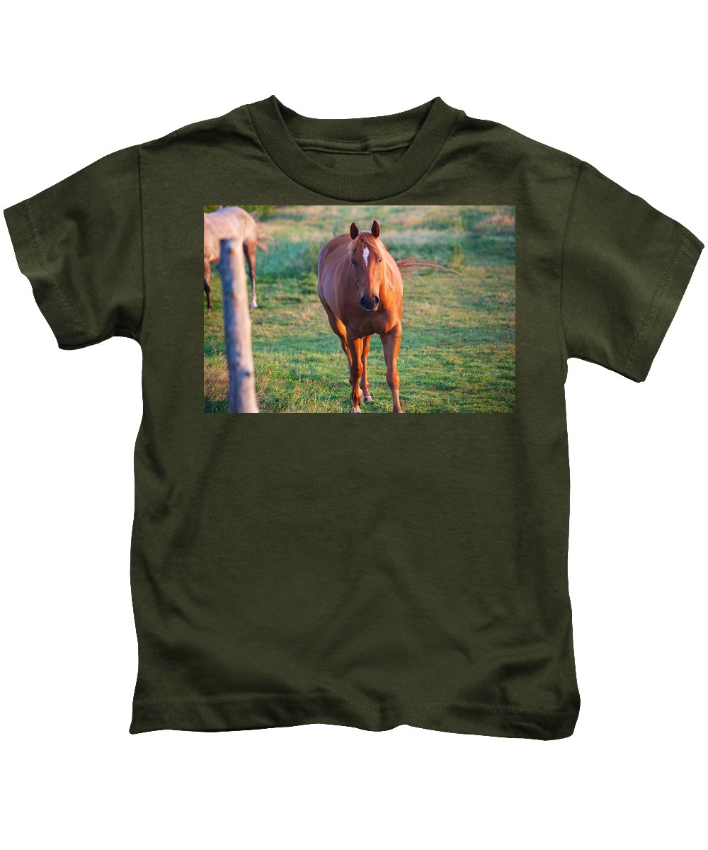 Horse Kids T-Shirt featuring the photograph Lead Horse by Allan Morrison