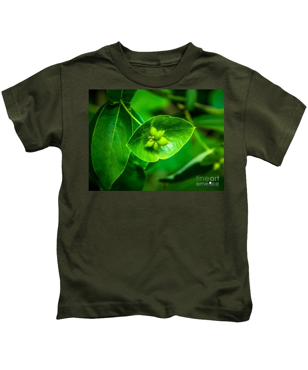 Nature Kids T-Shirt featuring the photograph Leaf With Seeds by Grace Grogan
