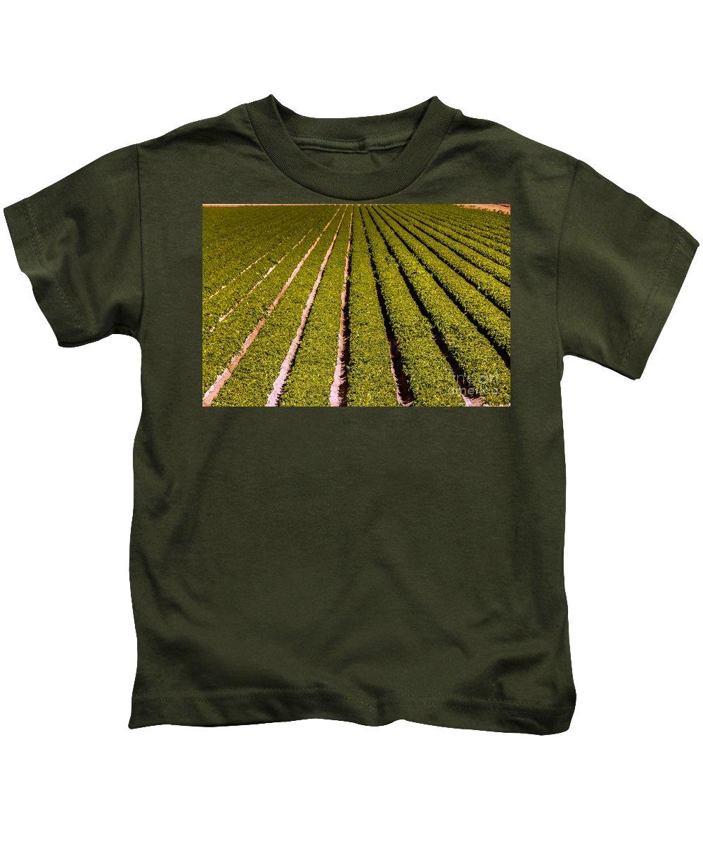 Yuma Kids T-Shirt featuring the photograph Lettuce Farming by Robert Bales