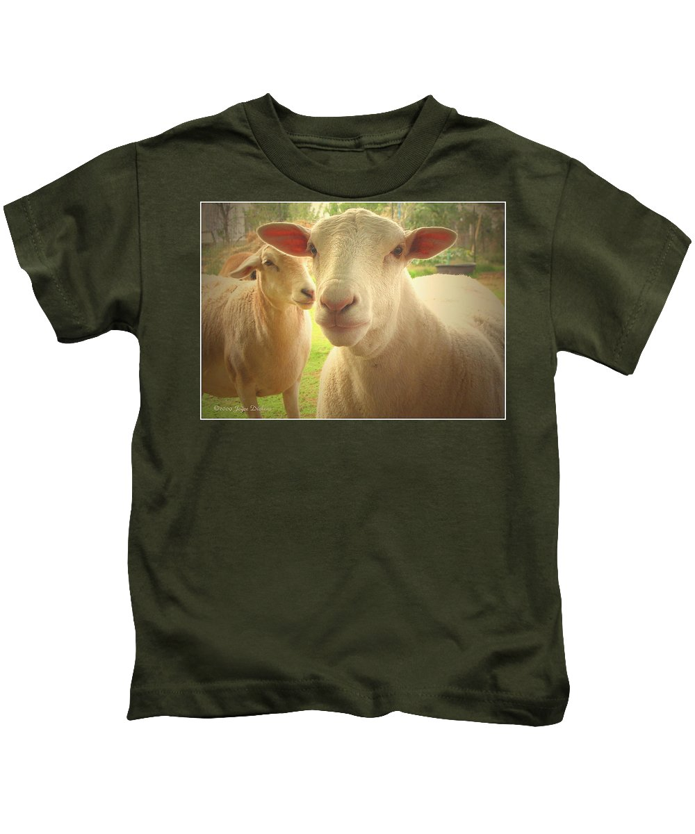 Lamb Kids T-Shirt featuring the photograph Light And Peace by Joyce Dickens