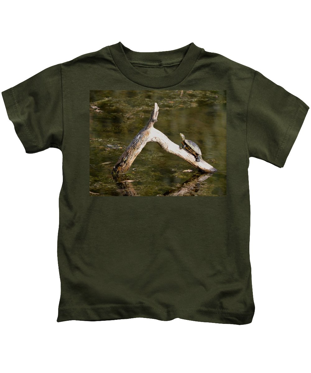 New York Kids T-Shirt featuring the photograph Log Climbing Turtle by Richard Bryce and Family