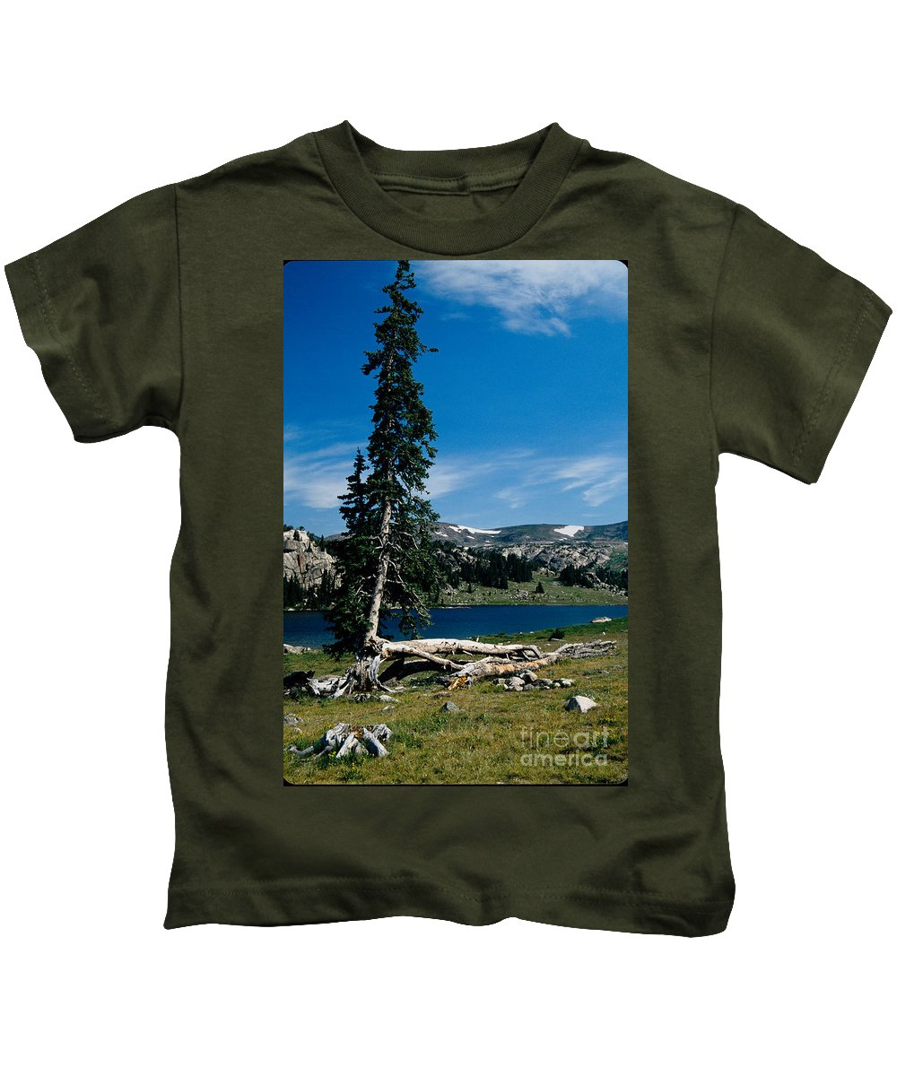 Mountains Kids T-Shirt featuring the photograph Lone Tree At Pass by Kathy McClure