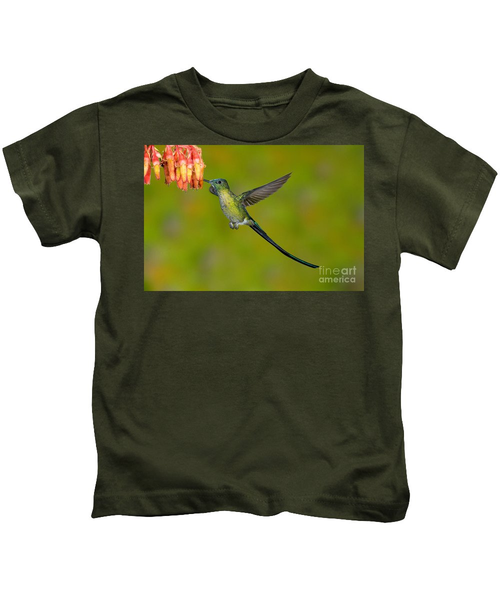 Fauna Kids T-Shirt featuring the photograph Long-tailed Sylph by Anthony Mercieca