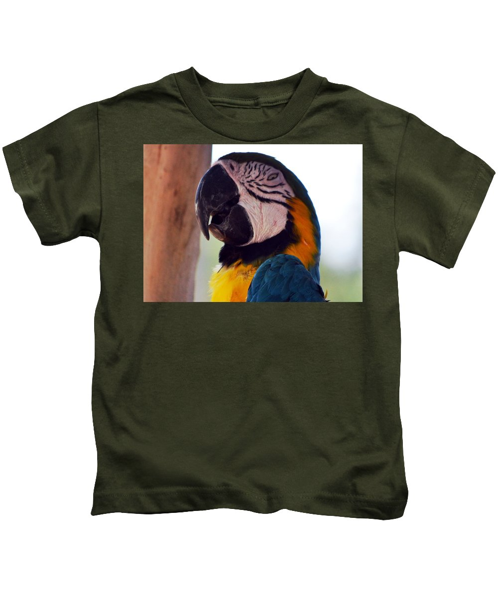 Macaw Head Study Kids T-Shirt featuring the photograph Macaw Head Study by Maria Urso