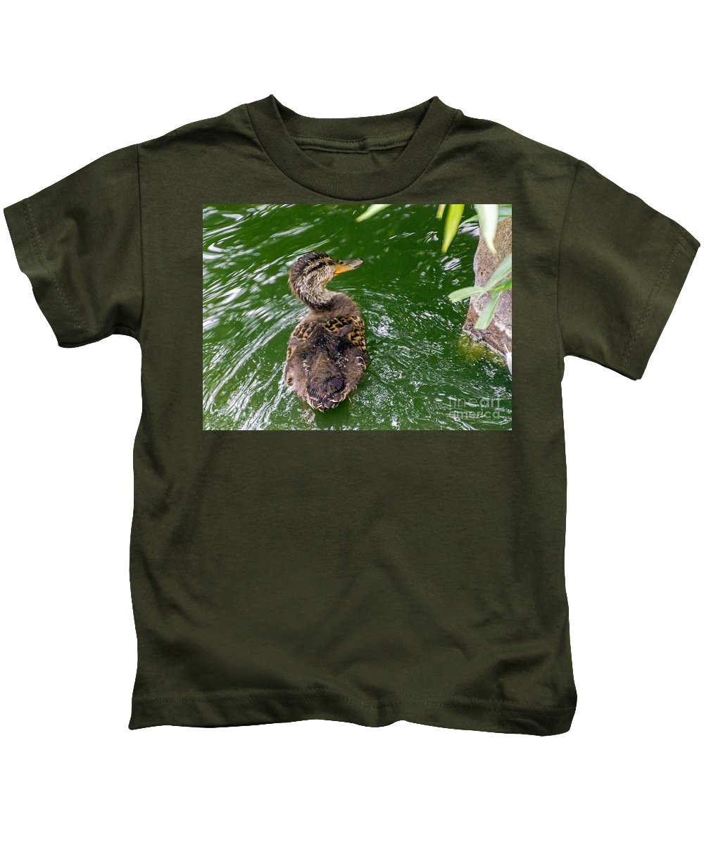 Anas Platyrhynchos Kids T-Shirt featuring the photograph Mallard Duckling by Kate Brown