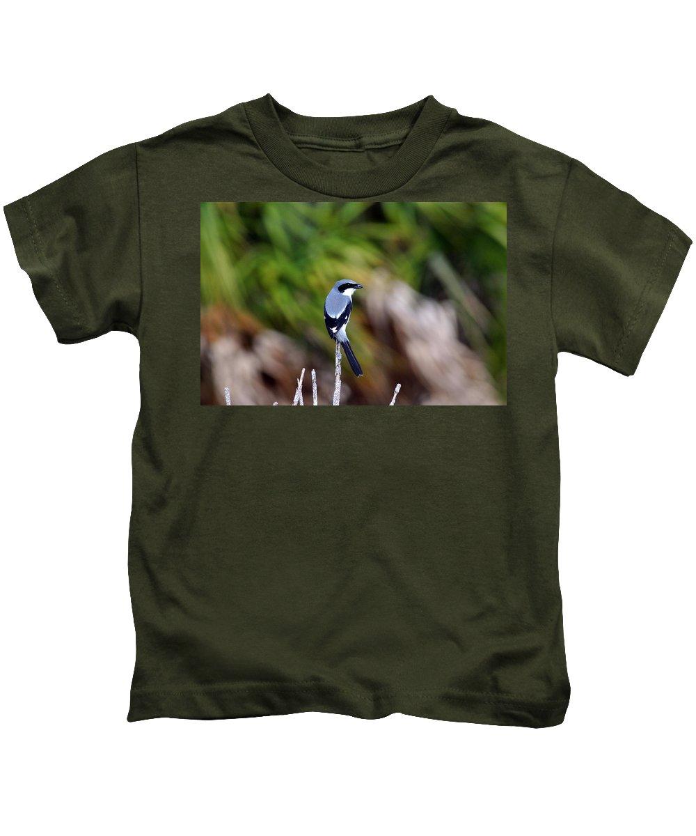 Loggerhead Shrike Kids T-Shirt featuring the photograph Masked Bird by Davids Digits