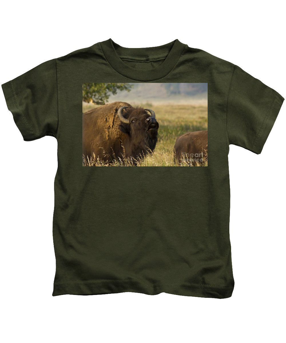 Animal Kids T-Shirt featuring the photograph Mighty Bison by Teresa Zieba