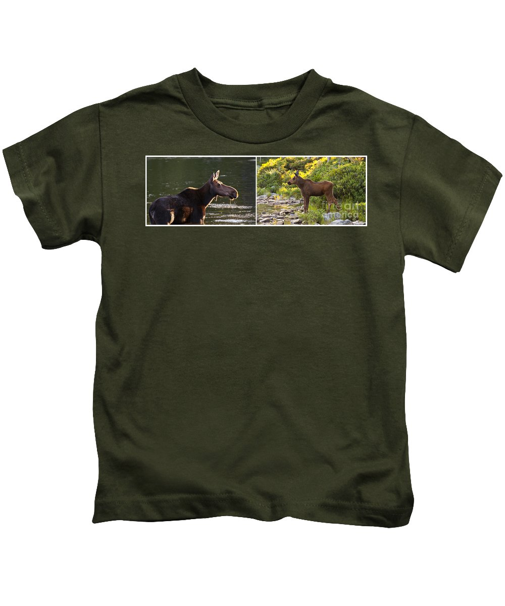 Maine Kids T-Shirt featuring the photograph Moose And Baby 5 by Glenn Gordon