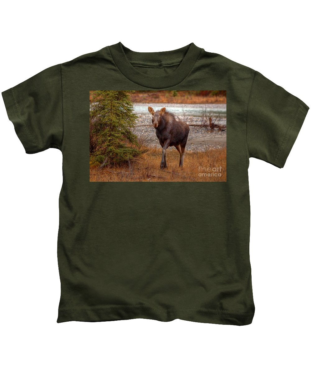 Moose Kids T-Shirt featuring the photograph Moose Calf by James Anderson
