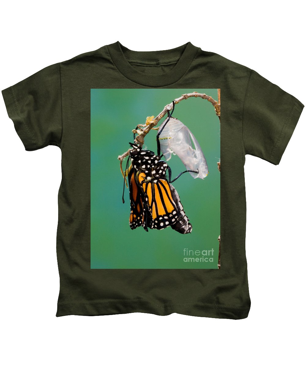 Animal Kids T-Shirt featuring the photograph Newly-emerged Monarch Butterfly by Anthony Mercieca
