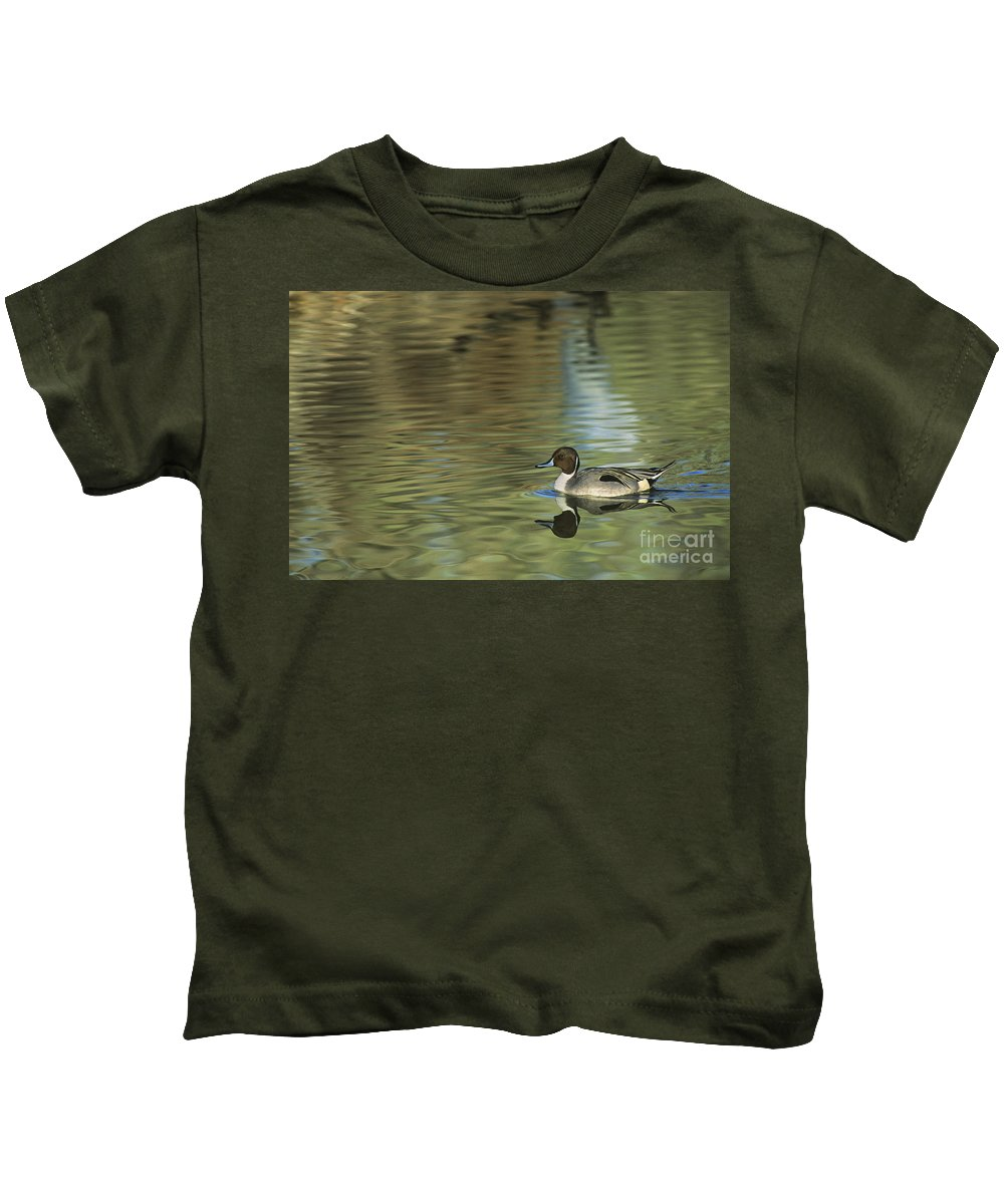 North America Kids T-Shirt featuring the photograph Northern Pintail In A Quiet Pond California Wildlife by Dave Welling