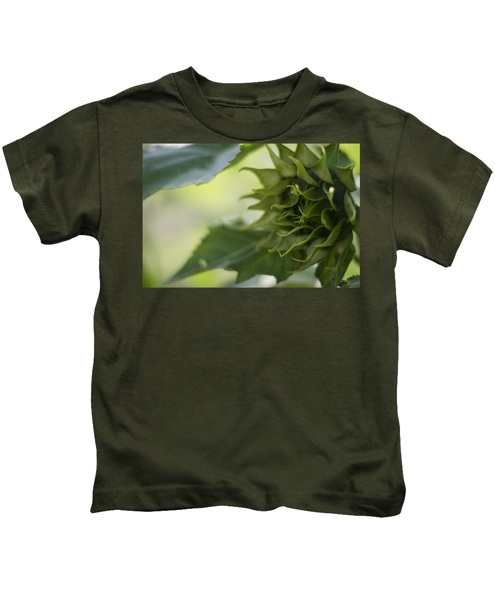 Sunflower Kids T-Shirt featuring the photograph Not Sunny Yet by Heather Applegate