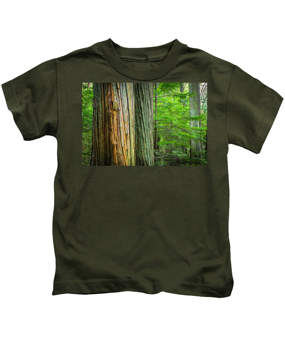 Glacier National Park Kids T-Shirt featuring the photograph Old Growth Cedars Glacier National Park by Rich Franco