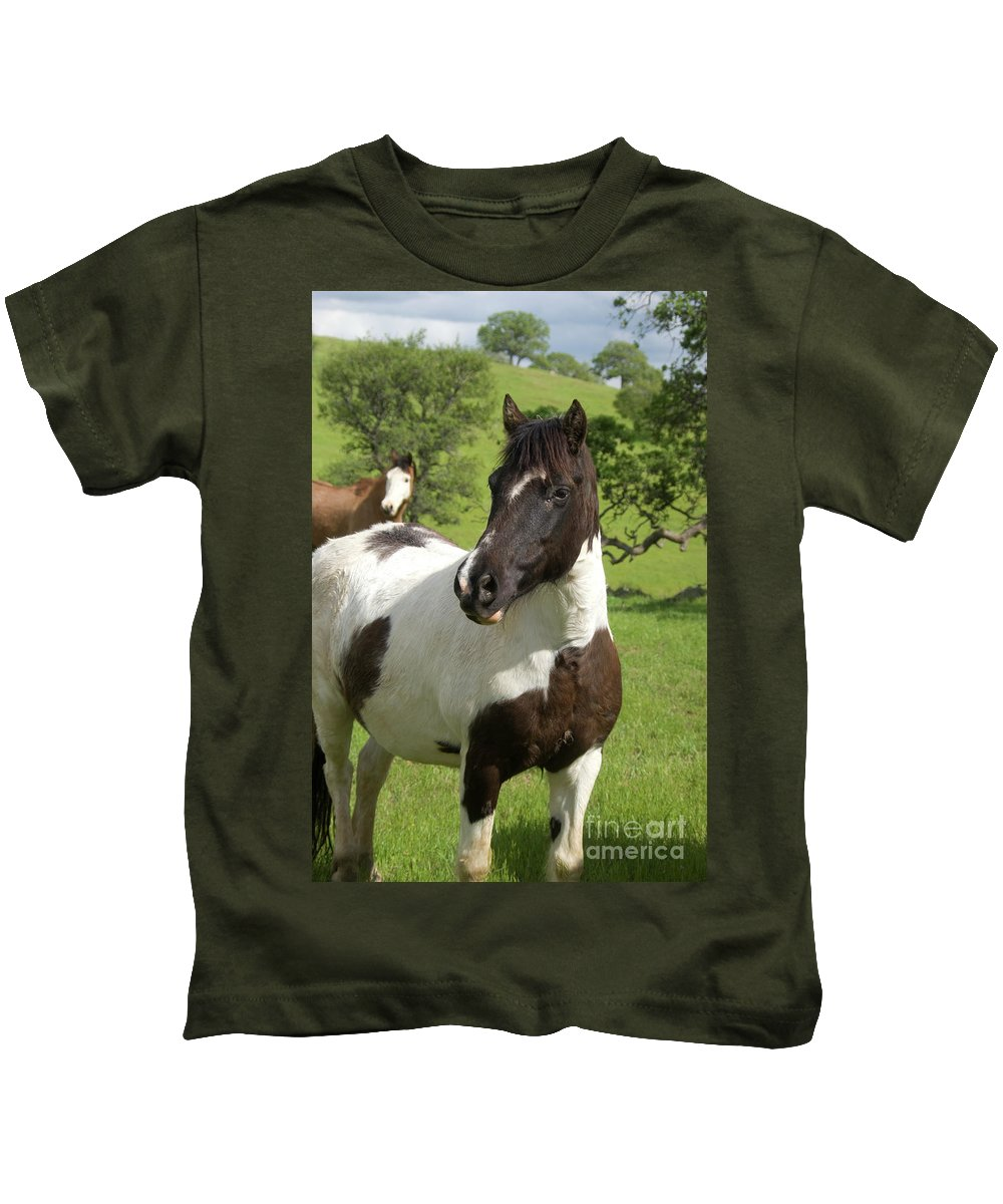 Horse Kids T-Shirt featuring the photograph Onlookers by Jim And Emily Bush