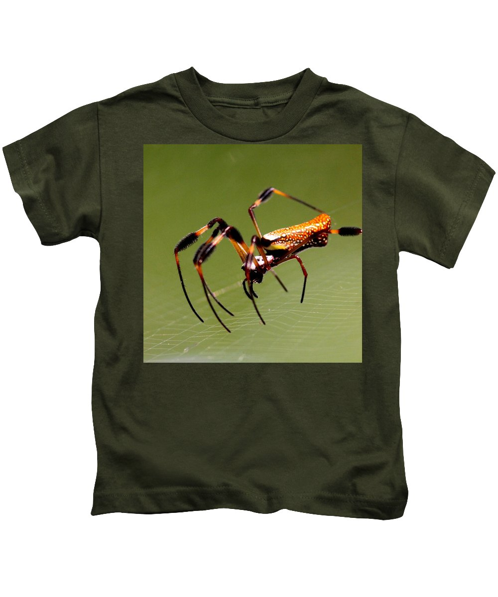 Orb Weaver Kids T-Shirt featuring the photograph Orb Weaver - Coastal Spider by Travis Truelove