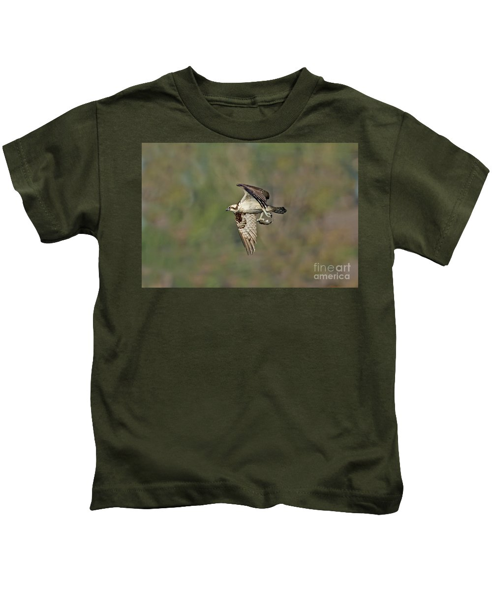 Animal Kids T-Shirt featuring the photograph Osprey Carrying Small Fish by Anthony Mercieca