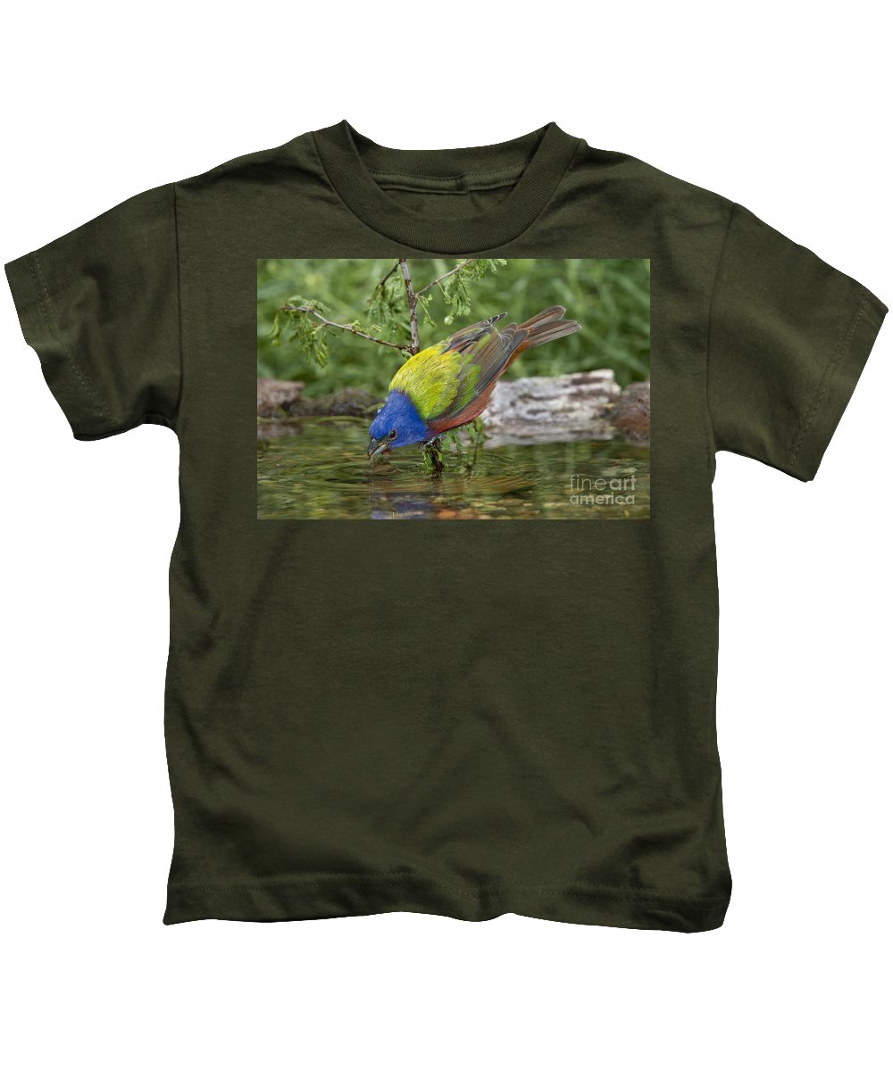 Painted Bunting Kids T-Shirt featuring the photograph Painted Bunting by Anthony Mercieca