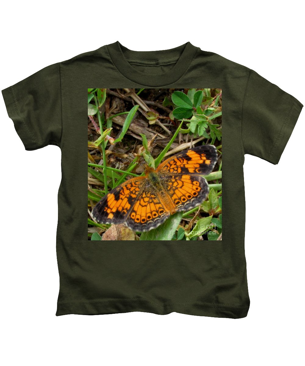 Small Orange And Black Butterfly Pearl Crescent Butterfly North American Butterflies Kids T-Shirt featuring the photograph Pearl Crescent Butterfly by Joshua Bales