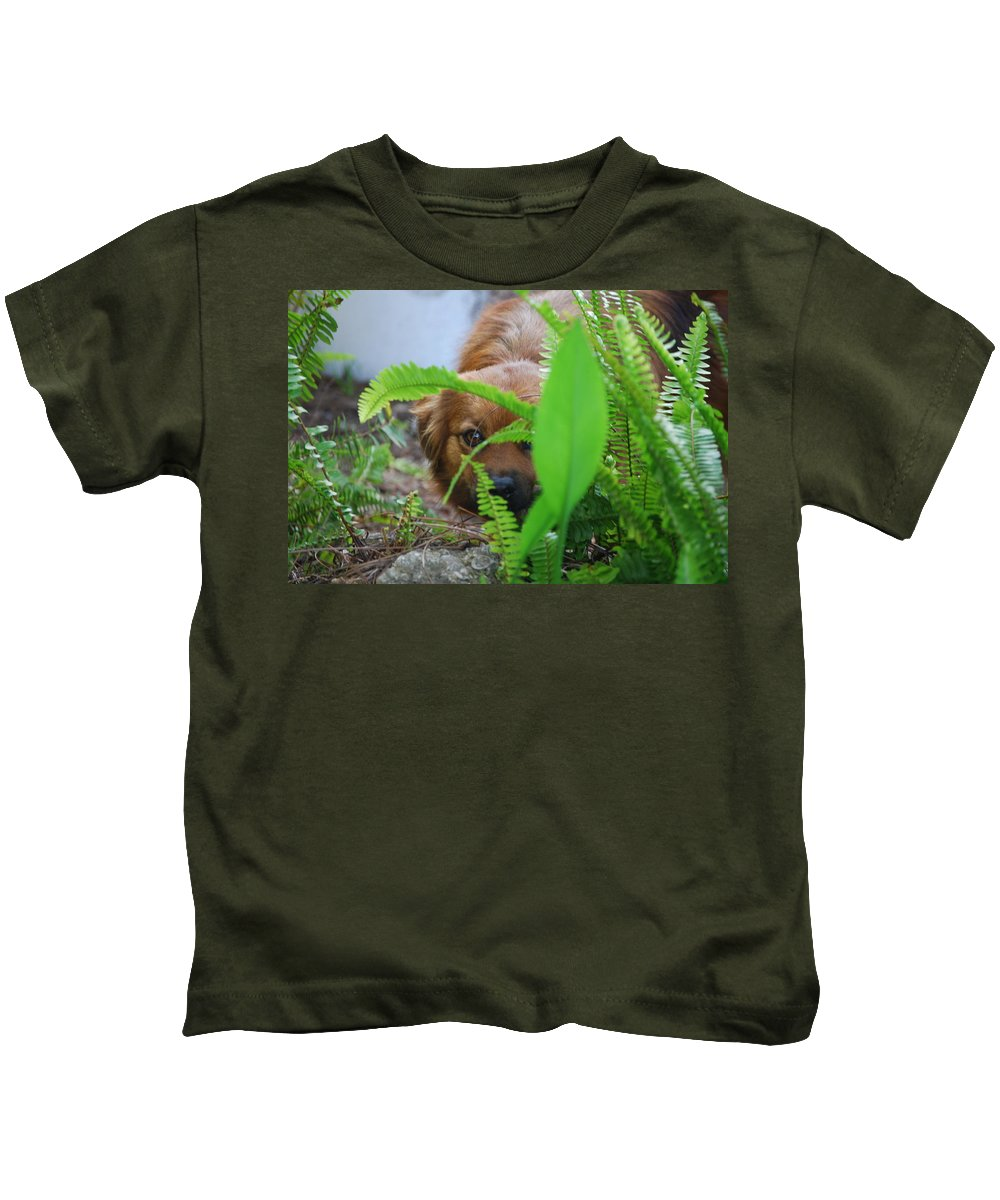 Lady Hiding In The Ferns. Dog Kids T-Shirt featuring the photograph Peek-a-boo by Robert Floyd