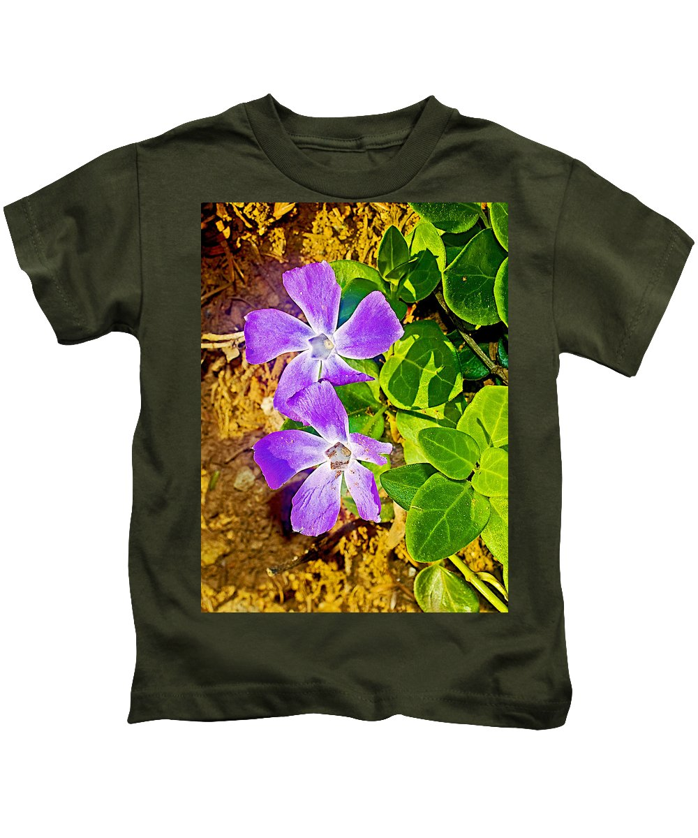 Periwinkles By West Point Inn On Mount Tamalpias Kids T-Shirt featuring the photograph Periwinkles By West Point Inn On Mount Tamalpias-california by Ruth Hager