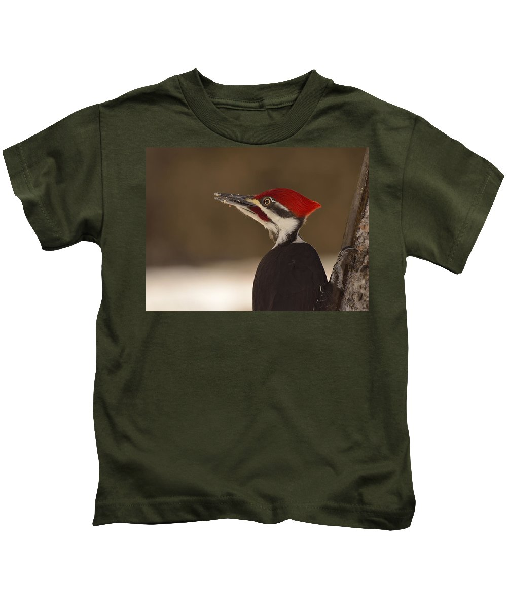 Pileated Woodpecker Kids T-Shirt featuring the photograph Pileated Woodpecker by Joshua McCullough