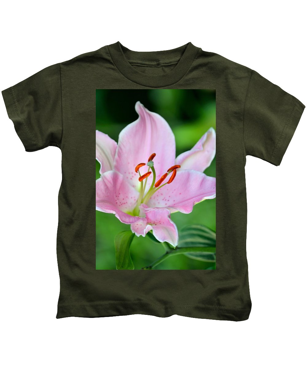 Lily Kids T-Shirt featuring the photograph Pink Lily by Jatinkumar Thakkar