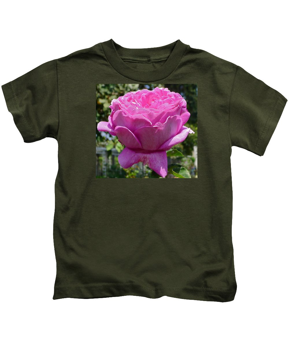 Flower Kids T-Shirt featuring the photograph Pink Rose by Denise Mazzocco