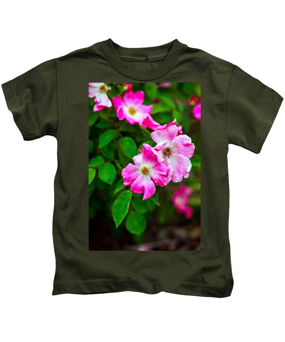 Bumble Bee Kids T-Shirt featuring the photograph Pink Roses by Sennie Pierson