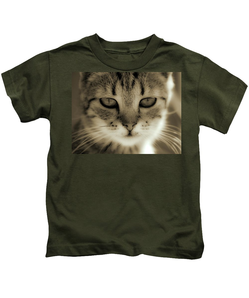 Cat Kids T-Shirt featuring the photograph Portrait by Daniel Csoka